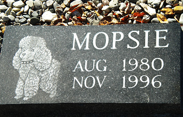 Pet Memorials Granite Signs Amp Bronze Kovenz Memorial